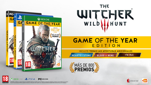 Witcher 3 Game of the Year